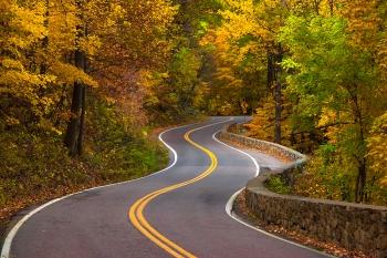 winding_road_5