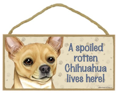 a-spoiled-rotten-chihuahua-tan-lives-here-wood-sign